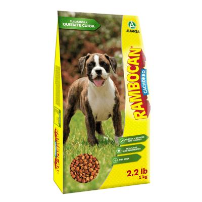 Adulto fogatas para perros calientes